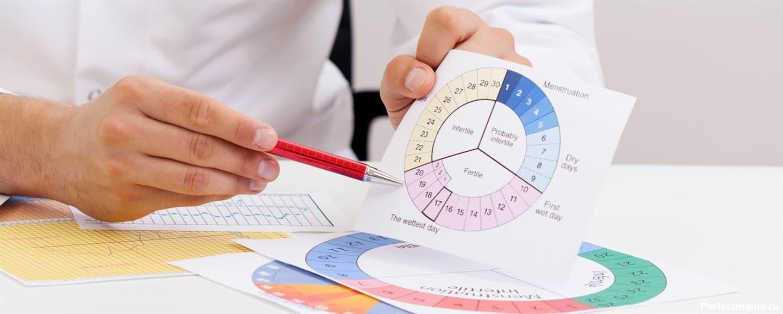 Высчитать примерный день овуляции помогает календарный метод